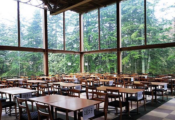 森林餐廳被森林包圍