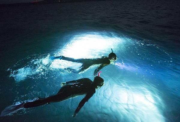 夜間浮潛 前進夜間幻想世界 ナイトシュノーケル 夜の幻想世界へ