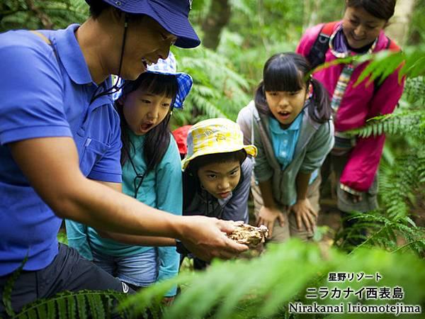 森林探險 (3)