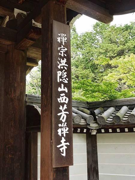 苔寺5.JPG