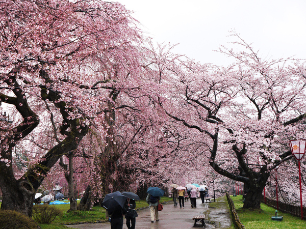 青森弘前城.JPG