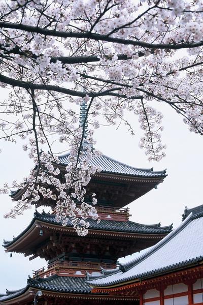 清水寺-3.JPG