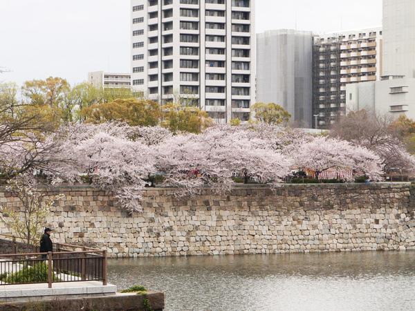 大阪城9.JPG