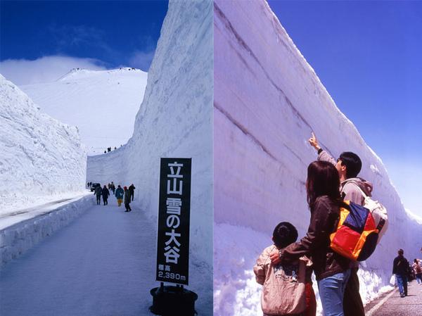 立山雪大谷.jpg