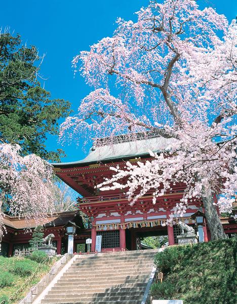 宮城_鹽釜神社.jpg