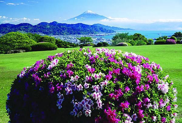 從日本平看富士山.jpg