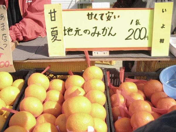 好吃的蜜柑.jpg