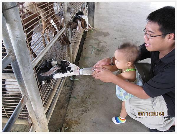 farm9.jpg