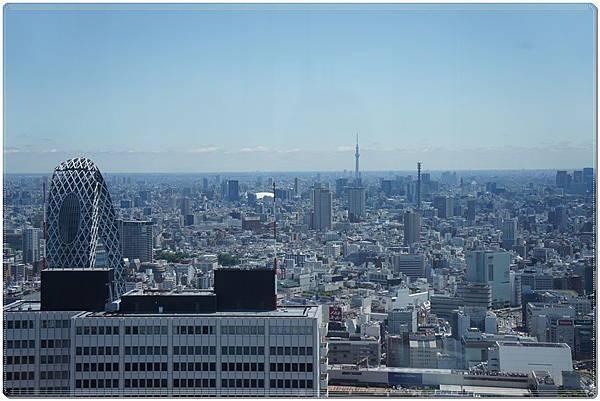 tokyo D4006