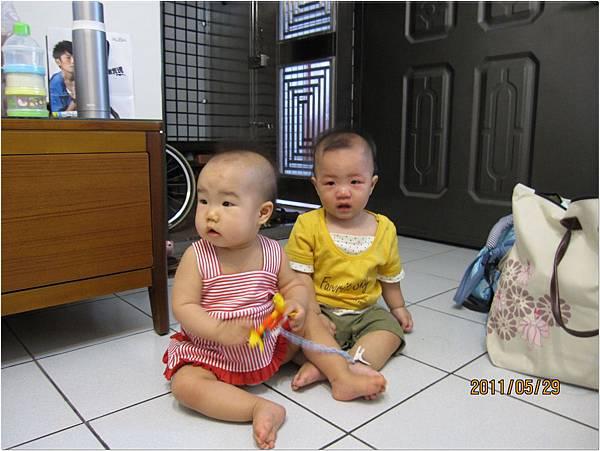babies03.jpg