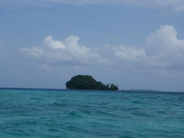 是鯨魚島啦!