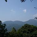 藍天,青山,綠樹-2009.10陽明山輕鬆go
