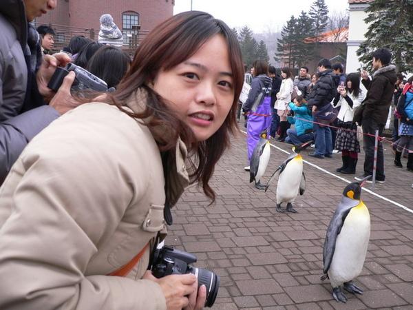 企鵝.jpg
