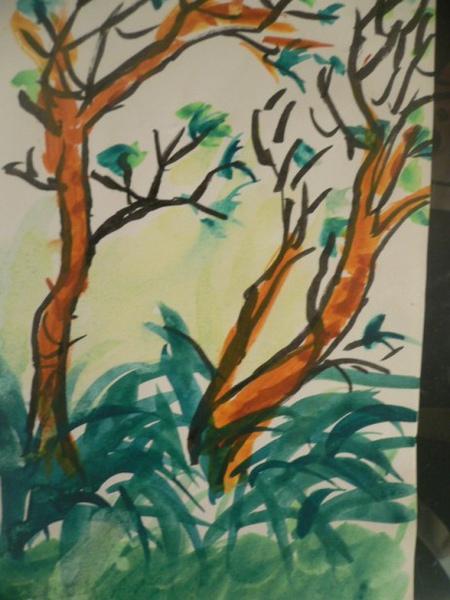 台大樹1號彩色版