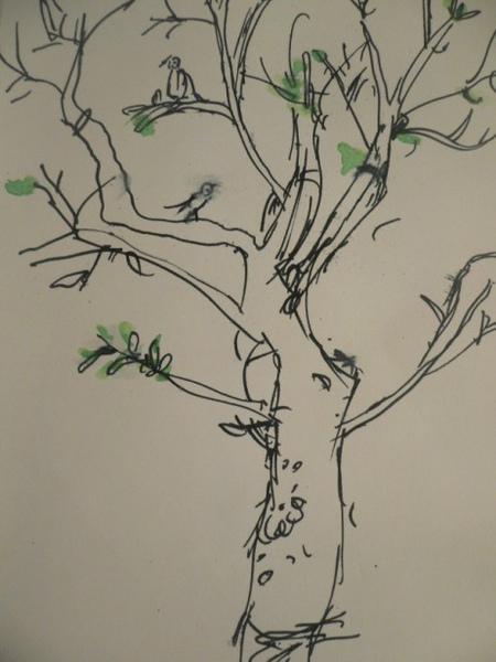 台大樹1號黑白版