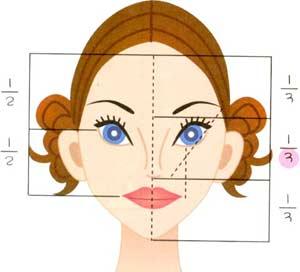臉部標準比例圖