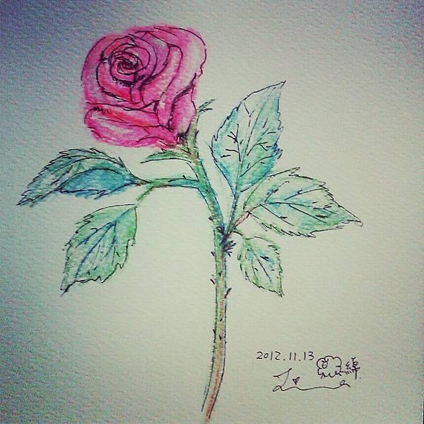 IMG_20121113_151208