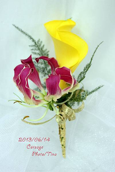 海芋胸花4