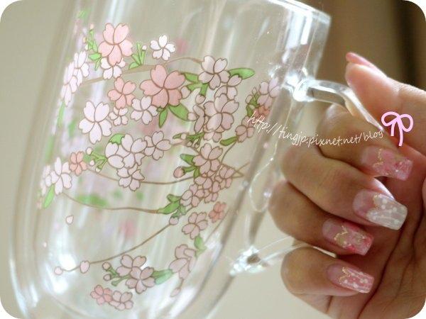 手拿櫻花杯