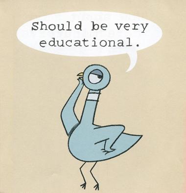 UnexpectedExperts_Pigeon_380