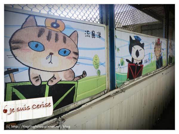 cat village-5
