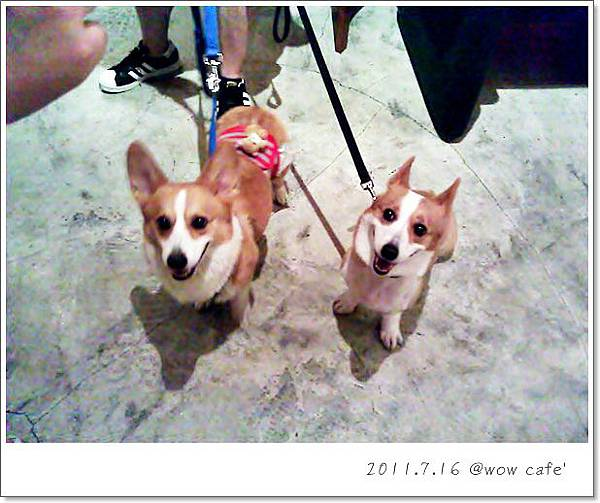 C360_2011-07-16 20-52-08_org.jpg