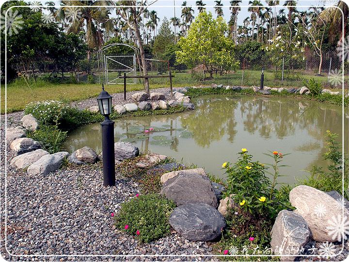 生態池邊的花草_1.jpg