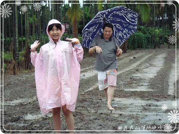 雨中巡視農場_2.jpg