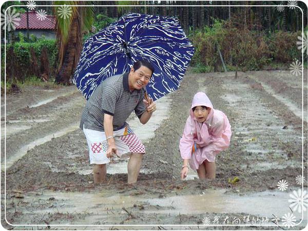 雨中巡視農場_3.jpg
