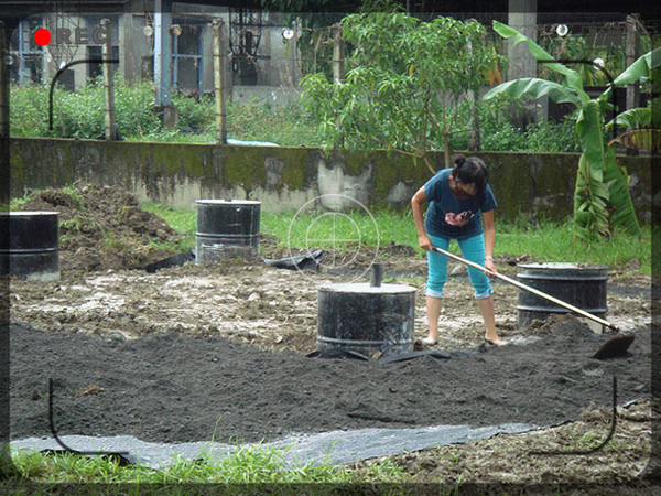 5.基地鋪雜草抑制蓆再鋪一層沙.jpg