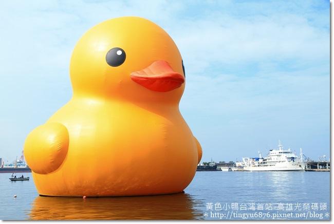 黃色小鴨14.JPG