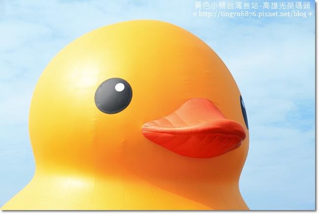 黃色小鴨16.JPG