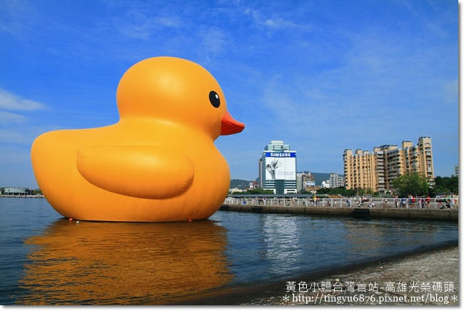黃色小鴨23.JPG