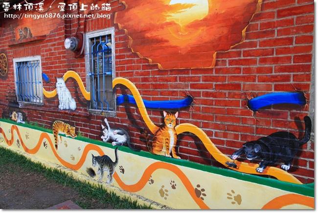 頂溪~屋頂上的貓05.JPG