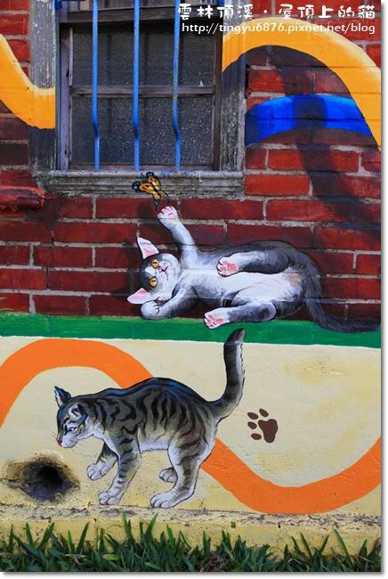 頂溪~屋頂上的貓06.JPG