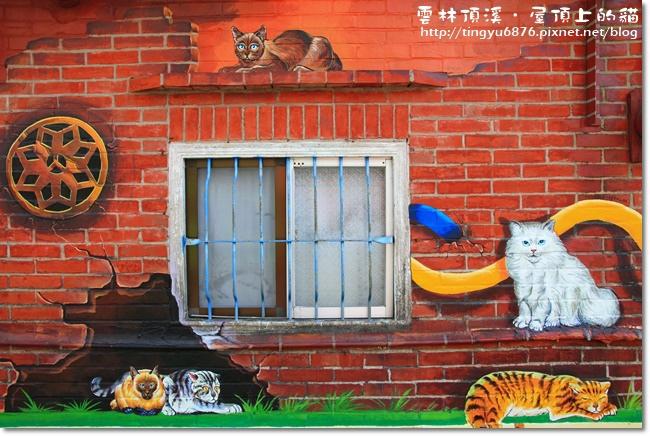 頂溪~屋頂上的貓08.JPG