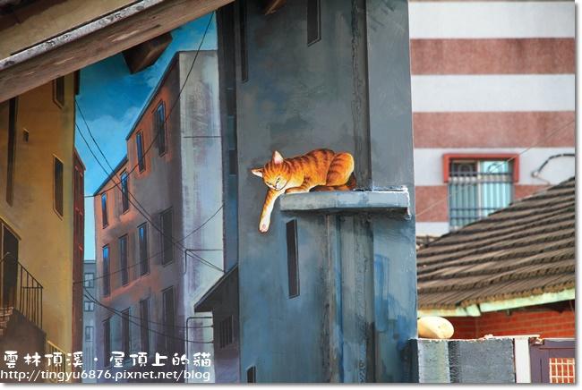 頂溪~屋頂上的貓16.JPG