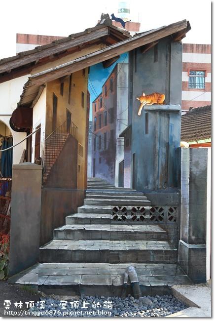 頂溪~屋頂上的貓15.JPG