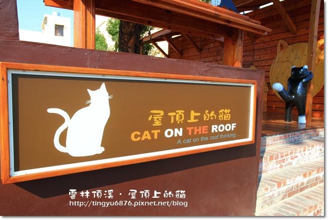 頂溪~屋頂上的貓19.JPG
