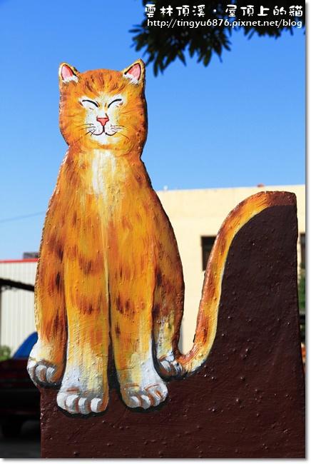 頂溪~屋頂上的貓21.JPG