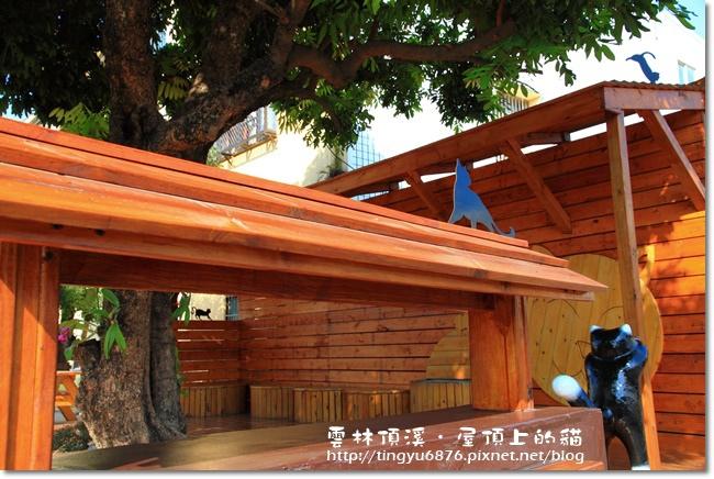 頂溪~屋頂上的貓20.JPG