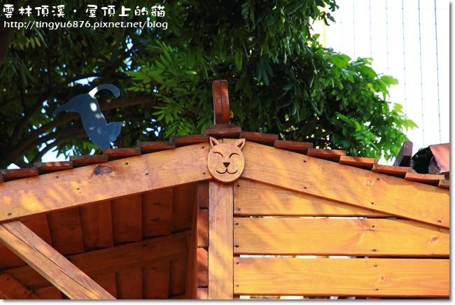 頂溪~屋頂上的貓33.JPG