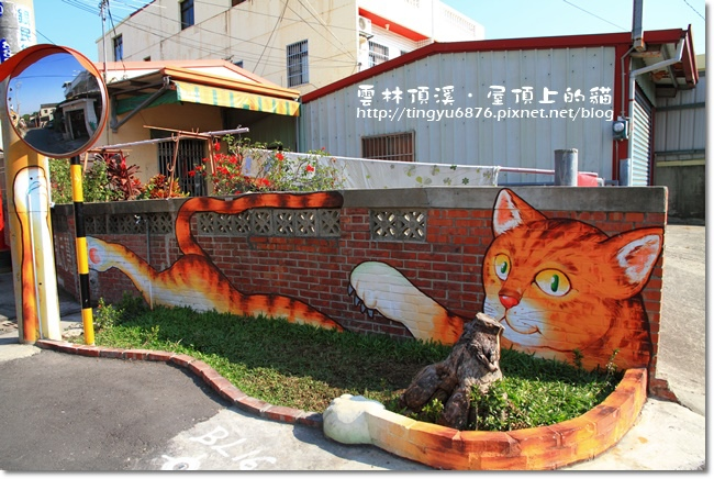 頂溪~屋頂上的貓48.JPG