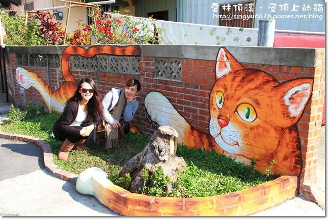 頂溪~屋頂上的貓51.JPG