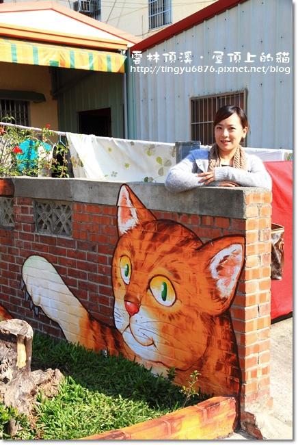 頂溪~屋頂上的貓56.JPG