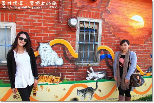 頂溪~屋頂上的貓76.JPG