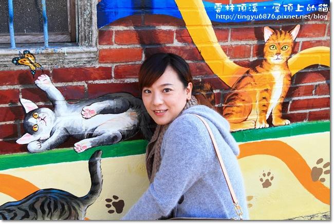 頂溪~屋頂上的貓77.JPG