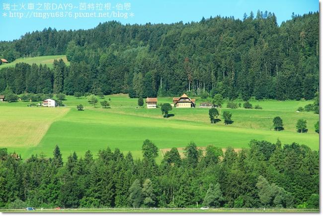 瑞士DAY9~茵特拉根-伯恩53.JPG