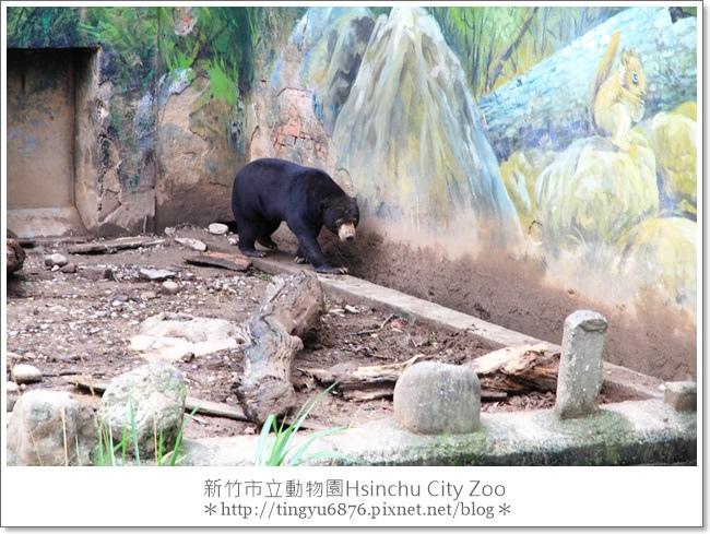 新竹市立動物園26.JPG