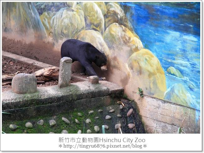 新竹市立動物園28.JPG